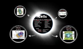 Copy of Cells
