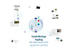 Fysik/Biologi fagdag