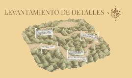 LEVANTAMIENTO DE DETALLES