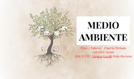Etica 6° - IV - MEDIO AMBIENTE