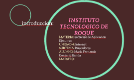INSTITUTO TECNOLOGICO DE ROQUE