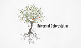 Deforestation: Drivers and impacts
