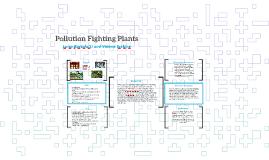 Luiza bortolotti on prezi for Pollution fighting plants
