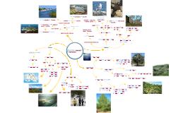 mapa conceptual de medi