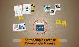Antropología Forense - Odontología Forense