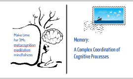 Memory - A Complex Coordination of Cognitive Processes