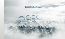 Copy of esquema naturals