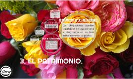 3. EL PATRIMONIO.