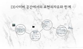 343(3)사이버 공간에서의 표현의자유와 한계