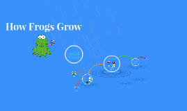 How Frogs Grow