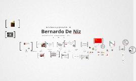 Copy of Timeline Prezumé by Bernardo Niz