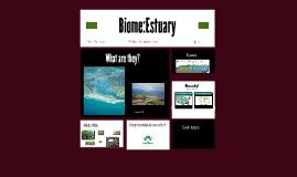Biome:Estuary