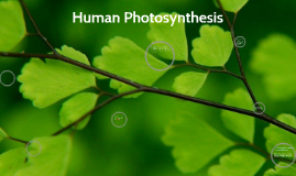 Human Photosynthesis