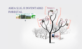 Copy of Area S.I.G. e Inventario Forestal