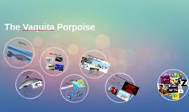 The Vaquita Porpois