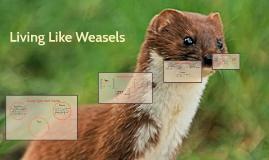 living like weasels by melissa ramos on prezi