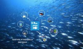 Copy of objetivos de desarrollo sostenible