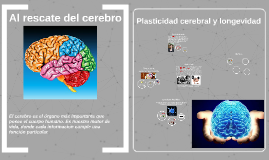 Al rescate del cerebro