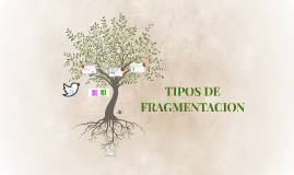 TIPOS DE FRAGMENTACION