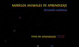 Modelos animales de aprendizaje