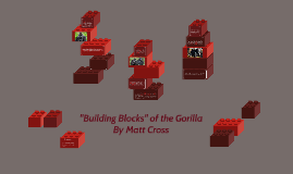 Copy of Evolution of the Gorilla