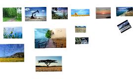 Copy of Desarrollo sustentable