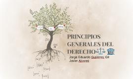 Copy of PRINCIPIOS GENERALES DE DERECHO